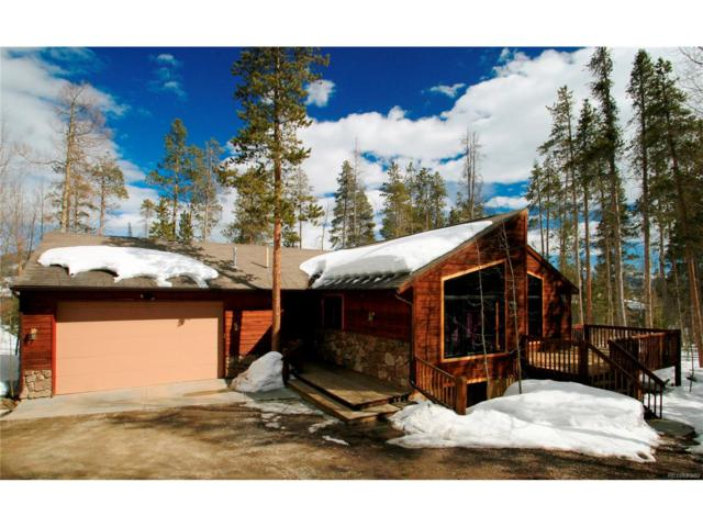 476 Royal Red Bird Drive, Silverthorne, CO 80498 (MLS #5407713) :: 8z Real Estate