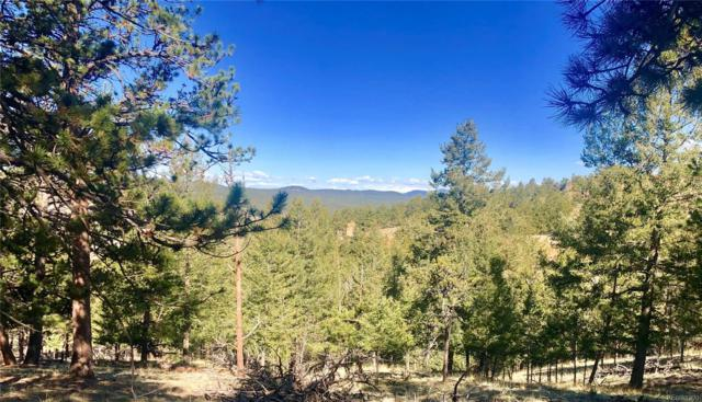 137 Gold Hill Way, Florissant, CO 80816 (MLS #5409420) :: 8z Real Estate