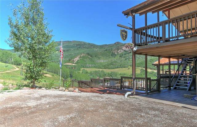 11101 County Road 117 5A, Glenwood Springs, CO 81601 (#5415313) :: The Scott Futa Home Team