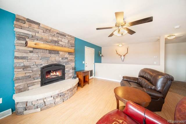 1191 Meadow Drive, Fairplay, CO 80440 (#5419041) :: Berkshire Hathaway HomeServices Innovative Real Estate