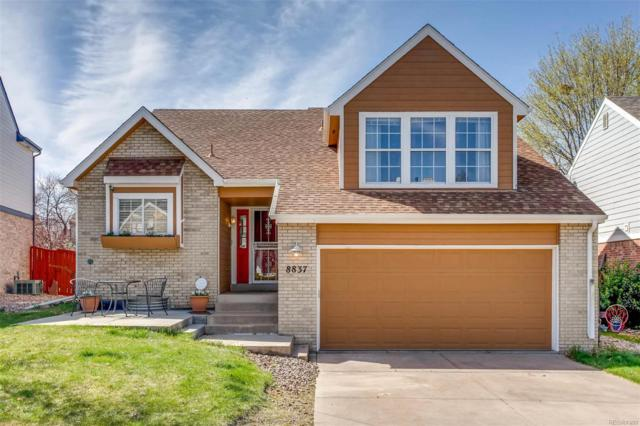 8837 Cactus Flower Way, Highlands Ranch, CO 80126 (#5419399) :: RE/MAX Professionals