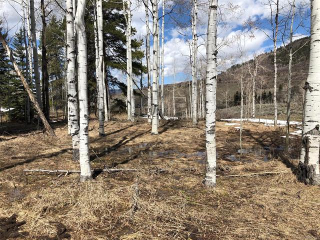 22700 Red Cloud Way, Oak Creek, CO 80467 (MLS #5420986) :: Find Colorado