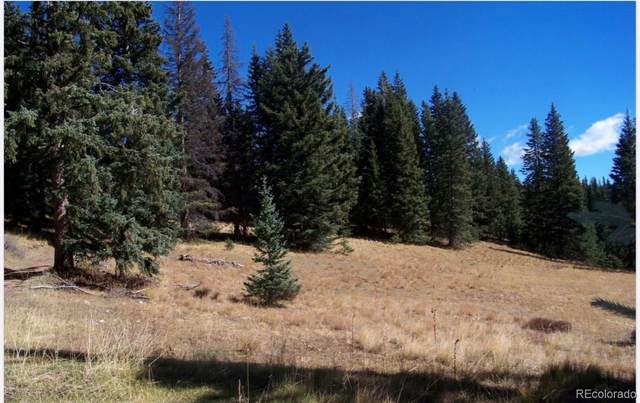 T.B.D Trujillo Trail, Antonito, CO 81120 (MLS #5421699) :: Stephanie Kolesar