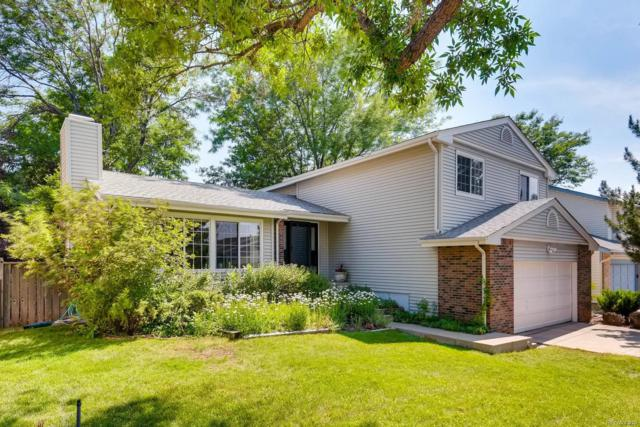 290 Prairie Ridge Road, Highlands Ranch, CO 80126 (#5425442) :: Wisdom Real Estate