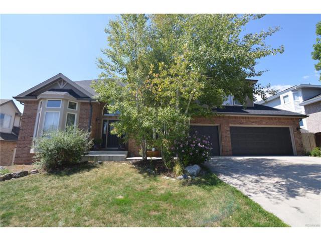 6648 S Oak Circle, Littleton, CO 80127 (MLS #5427650) :: 8z Real Estate