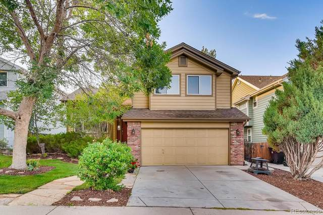 4329 Snowbird Avenue, Broomfield, CO 80020 (#5428437) :: Real Estate Professionals