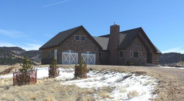 106 Buttercup Drive, Westcliffe, CO 81252 (#5433331) :: The Pete Cook Home Group