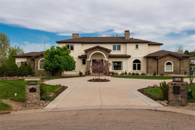 3 Black Fox Lane, Greenwood Village, CO 80111 (#5433349) :: The DeGrood Team