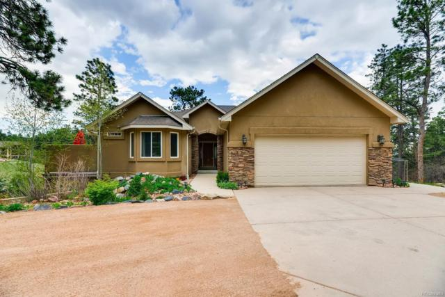 141 Spring Time Court, Monument, CO 80132 (#5433429) :: Wisdom Real Estate