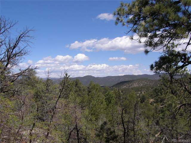 Lot 5 Fil #13 Redtail Trail, Cotopaxi, CO 81223 (#5433673) :: Kimberly Austin Properties