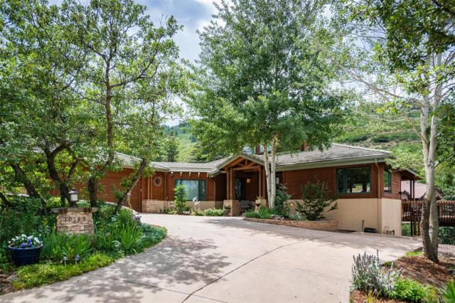 10143 Sumac Run, Littleton, CO 80125 (#5436352) :: The Tamborra Team