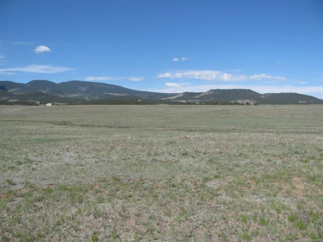 424 County 98 Road, Lake George, CO 80827 (MLS #5437953) :: 8z Real Estate