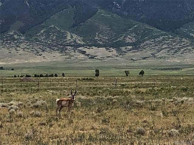 Antelope Run, Villa Grove, CO 81155 (#5437967) :: The Healey Group