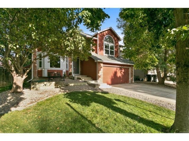 706 Buchanan Lane, Longmont, CO 80504 (MLS #5447757) :: 8z Real Estate