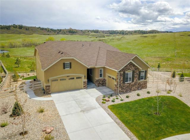 6052 Clover Park Court, Castle Rock, CO 80104 (#5448012) :: Harling Real Estate
