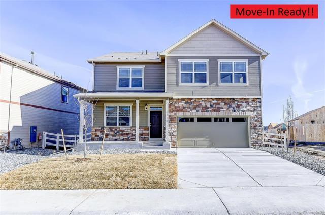 6075 Sun Mesa Circle, Castle Rock, CO 80104 (#5448725) :: House Hunters Colorado