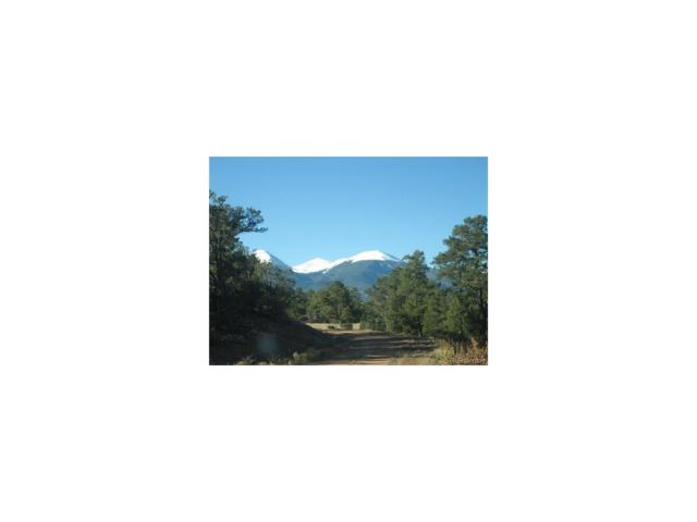 0 Prayer Mountain Pass, Cotopaxi, CO 81223 (MLS #5453282) :: 8z Real Estate
