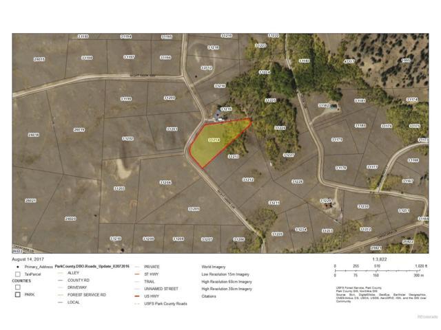 290 Night Hawk Circle, Como, CO 80432 (MLS #5454239) :: 8z Real Estate