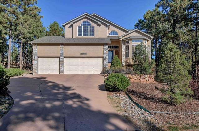15971 Woodmeadow Court, Colorado Springs, CO 80921 (#5456451) :: The Griffith Home Team