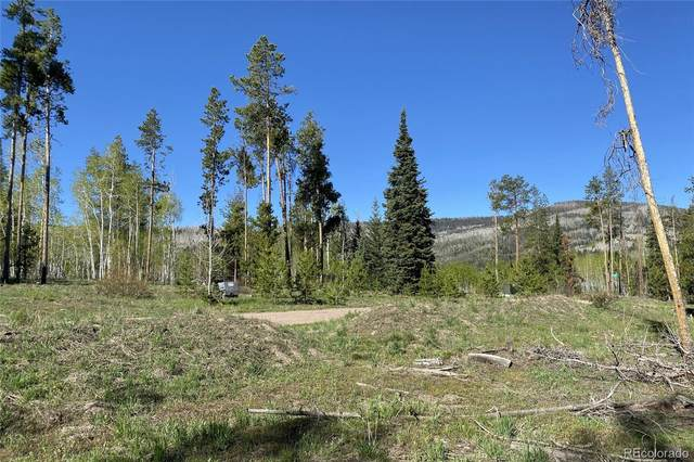 33255 Filly Trail, Oak Creek, CO 80467 (#5460004) :: The DeGrood Team