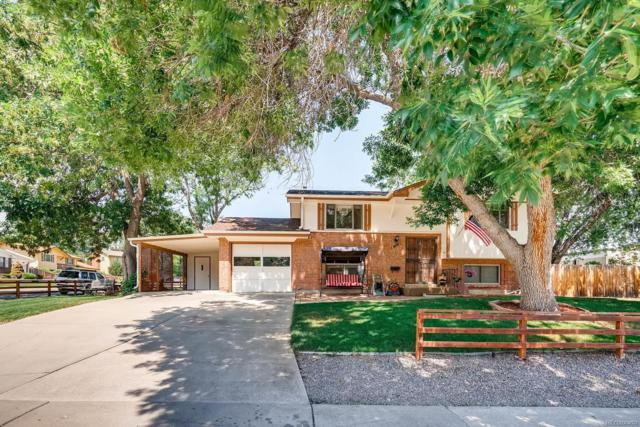 1303 S Dudley Street, Lakewood, CO 80232 (#5460062) :: Structure CO Group