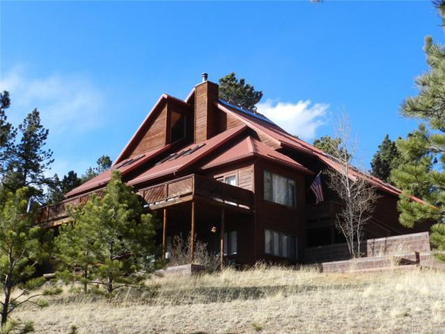 665 Meadow Drive, Pine, CO 80470 (#5460209) :: Wisdom Real Estate