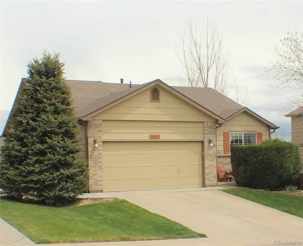 18631 Horse Creek Street, Parker, CO 80134 (#5462184) :: Colorado Home Finder Realty