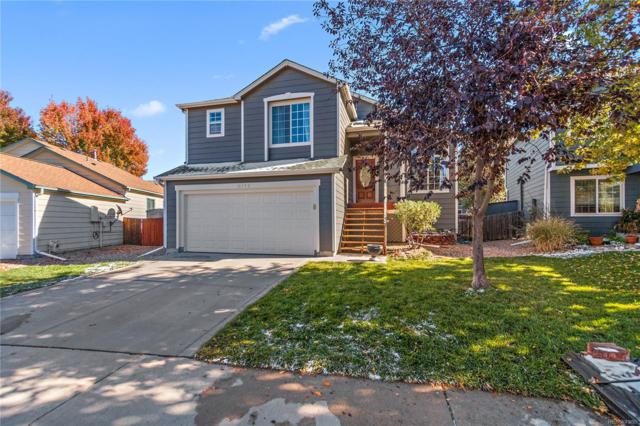 16952 Dandelion Way, Parker, CO 80134 (#5466864) :: The Healey Group