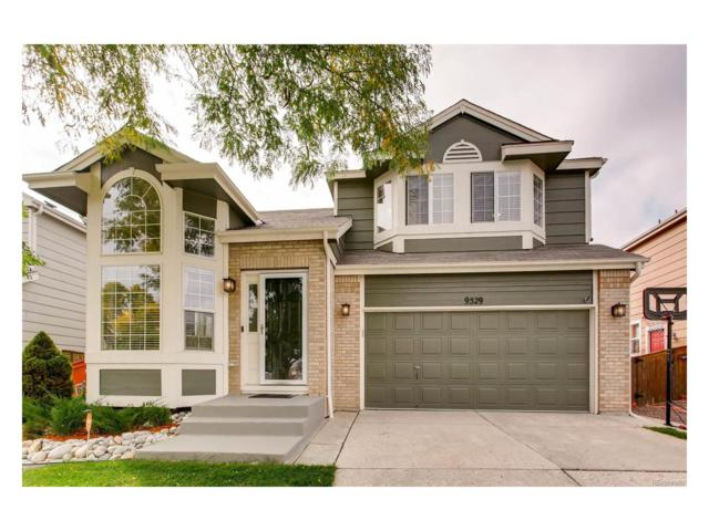 9529 High Cliffe Street, Highlands Ranch, CO 80129 (#5467052) :: The Peak Properties Group