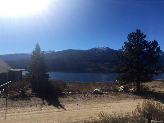 389 Twin Peaks Drive, Twin Lakes, CO 81251 (#5467134) :: Wisdom Real Estate
