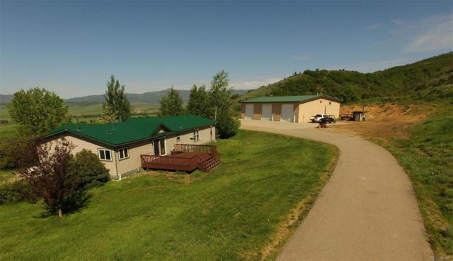 26650 Wheeler Creek Lane, Steamboat Springs, CO 80487 (#5470459) :: The Heyl Group at Keller Williams
