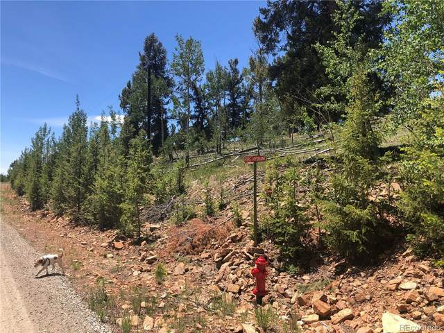 LOT 547 Middle Fork Vista, Fairplay, CO 80440 (#5471161) :: The DeGrood Team