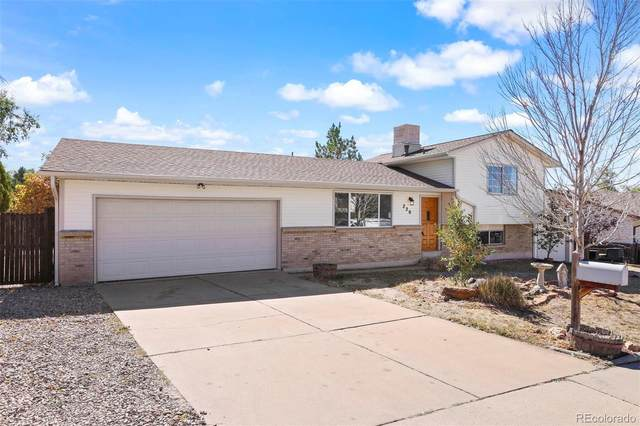 220 Douglas Fir Avenue, Castle Rock, CO 80104 (#5472383) :: My Home Team