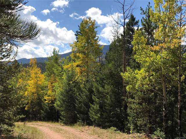 7231 Timbertrail Road, Evergreen, CO 80439 (MLS #5475460) :: 8z Real Estate