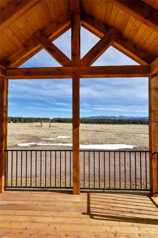 1925 Doe Valley Road, Guffey, CO 80820 (MLS #5478279) :: 8z Real Estate
