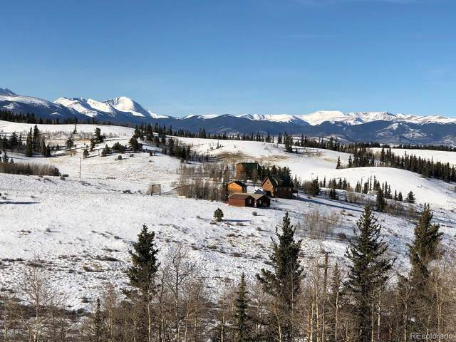 225 Gitche Goone Lane, Como, CO 80432 (#5479018) :: Chateaux Realty Group