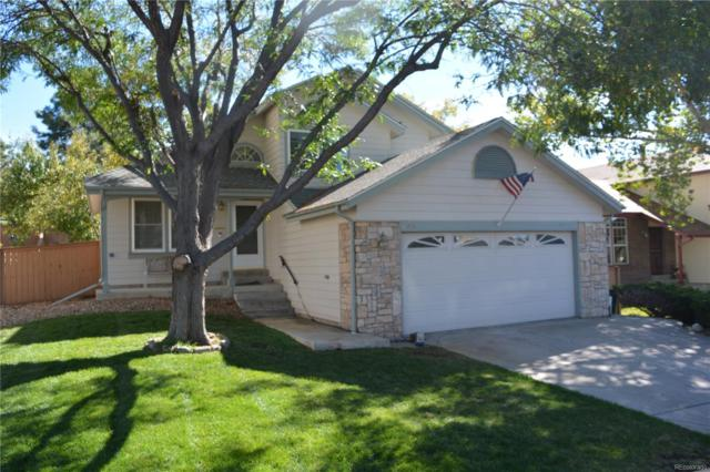 1056 Brittany Way, Highlands Ranch, CO 80126 (#5479910) :: Bicker Realty
