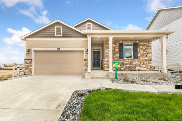 7113 Frying Pan Drive, Frederick, CO 80530 (#5480044) :: HomePopper