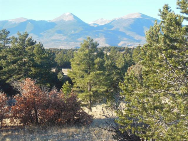 000 York Trail, Cotopaxi, CO 81223 (#5483111) :: The DeGrood Team