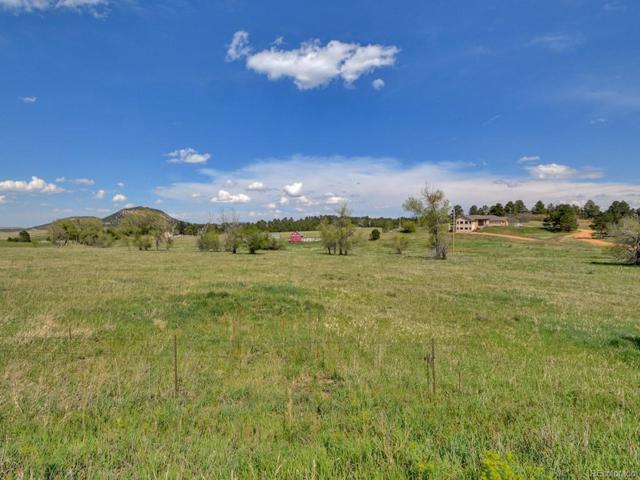 20255 Indi Drive, Monument, CO 80132 (#5483518) :: The Peak Properties Group