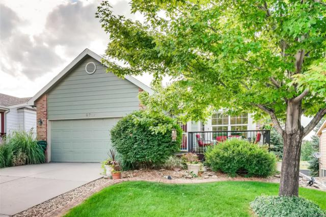 9717 W Peakview Drive, Littleton, CO 80123 (MLS #5486055) :: 8z Real Estate