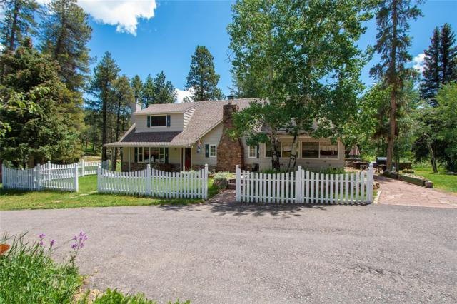 29152 Shadow Mountain Drive, Conifer, CO 80433 (#5487261) :: The DeGrood Team