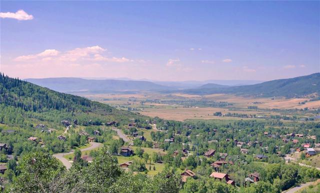 2820 Laurel Lane, Steamboat Springs, CO 80487 (#5487908) :: Relevate | Denver