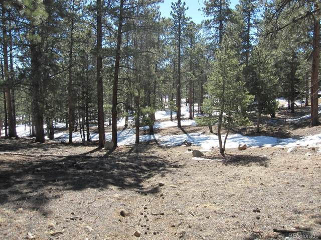 30269 Columbia Point, Buena Vista, CO 81211 (#5487915) :: The DeGrood Team