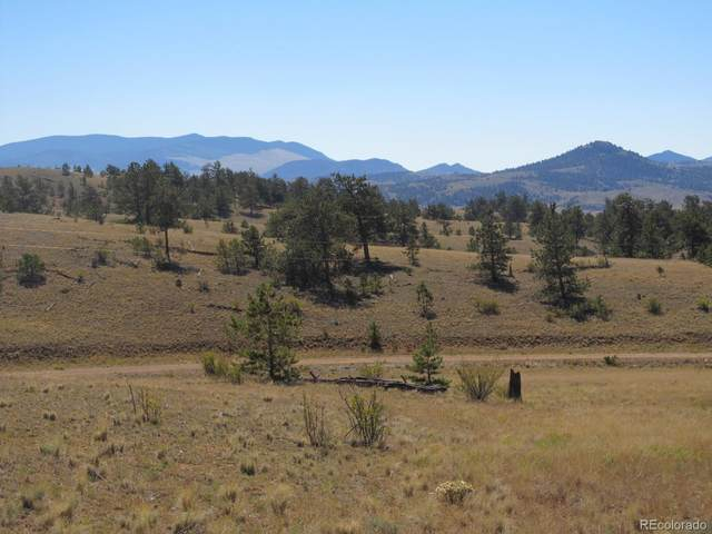 Running Bear, Hartsel, CO 80449 (#5488664) :: Kimberly Austin Properties