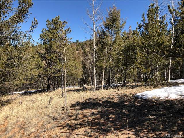 513 Last Dollar Drive, Cripple Creek, CO 80813 (MLS #5489534) :: 8z Real Estate