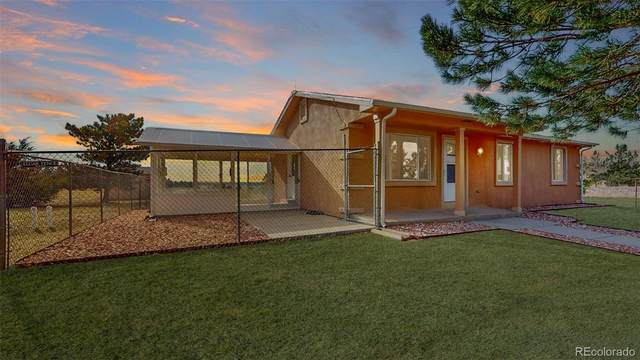 380 Russellville Road, Franktown, CO 80116 (MLS #5492135) :: 8z Real Estate