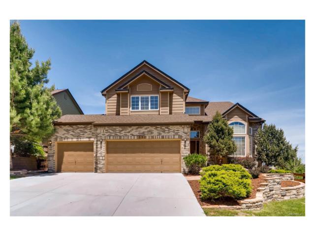 551 Seth Place, Castle Pines, CO 80108 (#5493844) :: RE/MAX Professionals