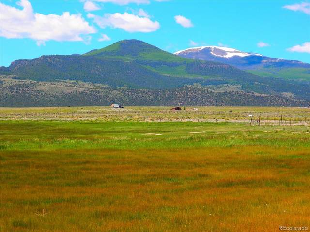 0 Co Road 14 A, Del Norte, CO 81132 (#5499327) :: The DeGrood Team