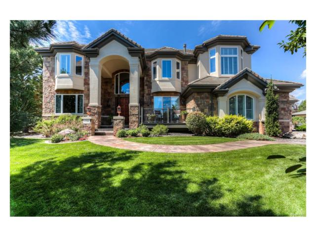 8750 Crooked Stick Place, Lone Tree, CO 80124 (MLS #5499777) :: 8z Real Estate